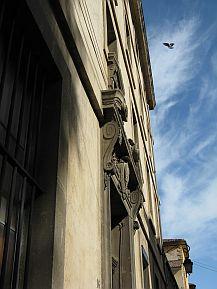 Provence Bird, by Grace Kerina