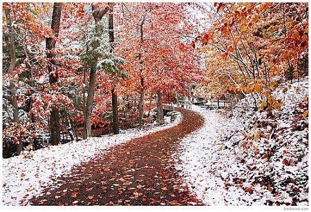 Two Seasons, by Bill Heine